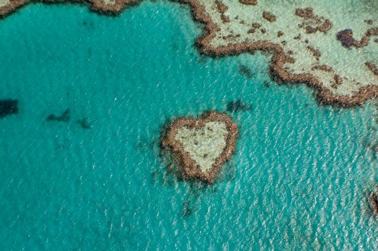 Heart Reef