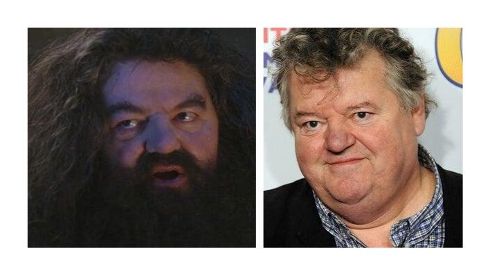 Hagrid Final