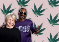 Celebrities Who Have Their Own Cannabis Brands
