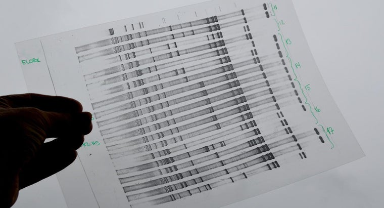 activate-ancestry-dna-test-online