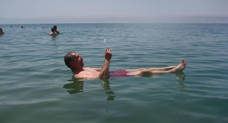 anything-live-dead-sea