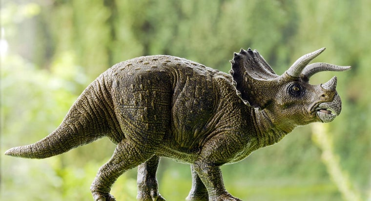 did-triceratops-eat