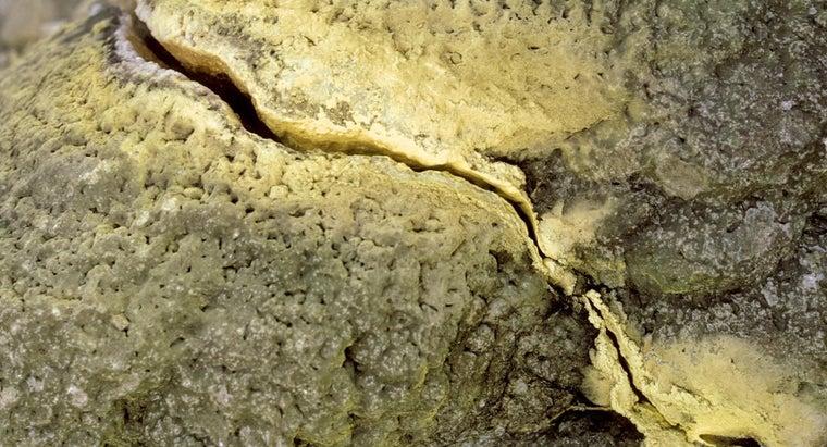 far-tectonic-plates-move-year