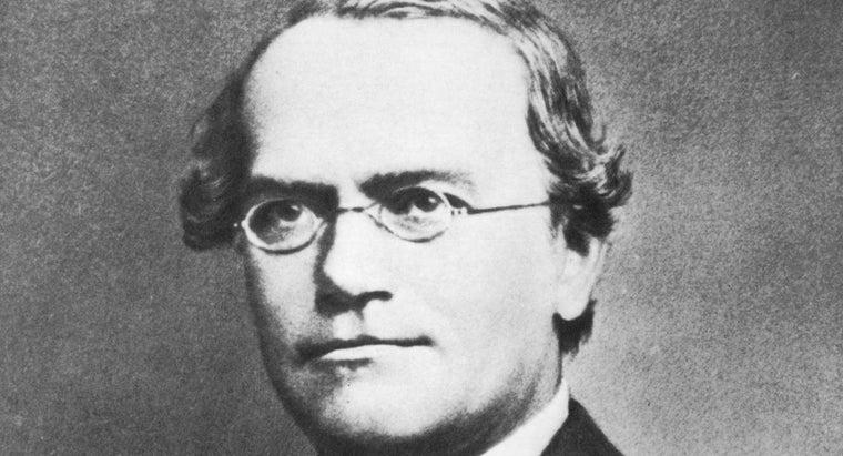 gregor-mendel-called-father-genetics