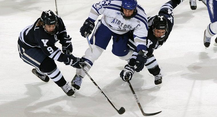 Ice Hockey Puck Players Game 1