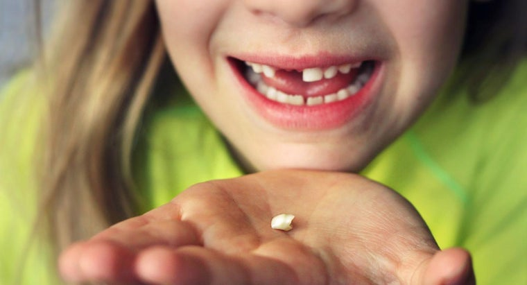 long-permanent-tooth-grow-after-losing-baby-tooth