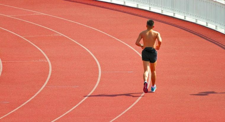 major-function-sweat-glands