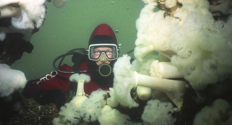 oceanography-important