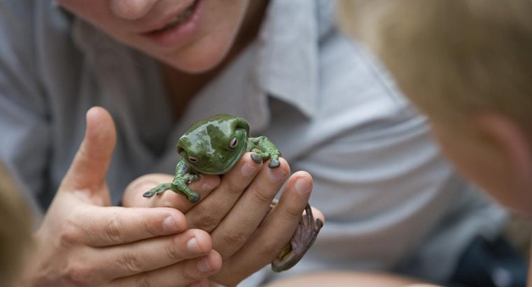 scientists-use-scientific-names-organisms