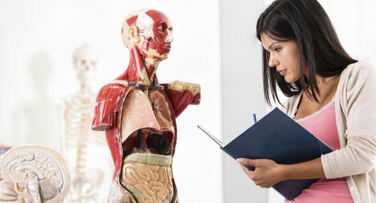colon-doctors-called