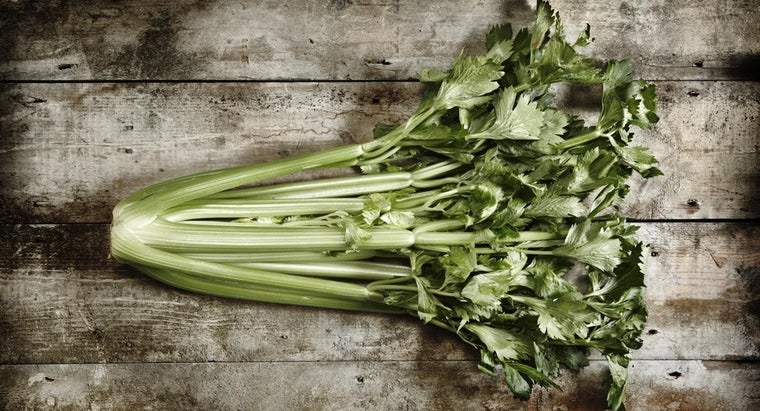 head-celery