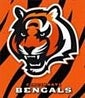 About the Cincinnati Bengals